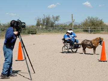 man with camera on tripod; mini horse hitched to cart with 2 people in cart