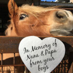 """Silver heart with black script """"In Memory of Nana & Papa from your boys"""" in front of chestnut horse looking over a metal fence"""