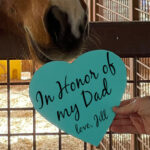 """Hand holding teal heart with black script """"In Honor of my Dad love, Jill"""" in front of horse muzzle"""